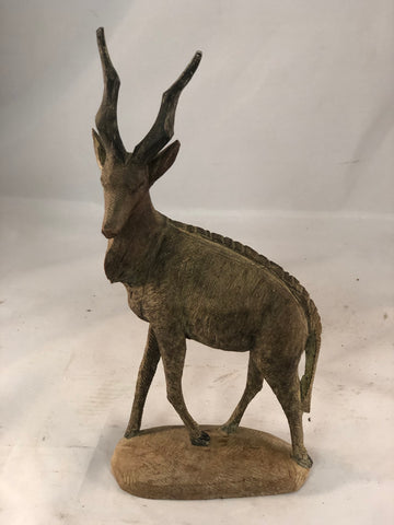 African ibex