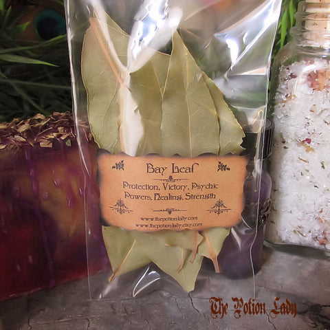 Bay Leaf | Sweet Laurel, Bay Laurel, Indian Bay, Noble Laurel, Roman Laurel | Protection, Strength, Healing, Psychic Powers, Success, Victory
