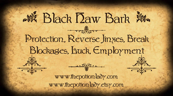 Black Haw Bark | Cramp Bark, May Rose, Devil's Shoestring, Hobblebush | Protection, Luck, Employment Matters