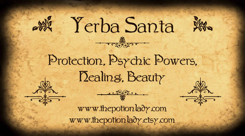 Yerba Santa | Mountain Balm, Bear Weed | Protection, Healing, Psychic Powers