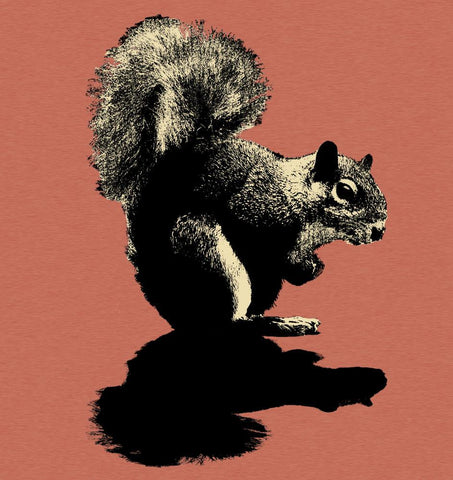 "Men's T-Shirt ""Squirrel"""