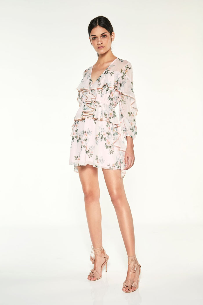 Wild Thyme L/S Mini Dress