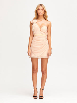 You're The One For Me Mini Dress Nude