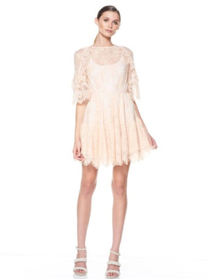 Everlasting Lace Mini Dress Shell - Sallyrose