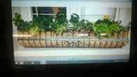 Window Sill Flower Holders