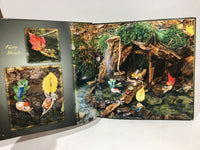 Fairy Houses Everywhere by Barry & Tracy Kane 2006 Hardcover