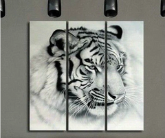 """THE WHITE TIGER"""