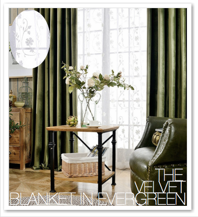 THE VELVET BLANKET IN EVERGREEN
