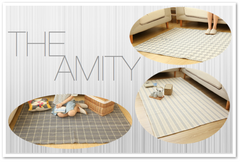 THE AMITY IN CHECKERS