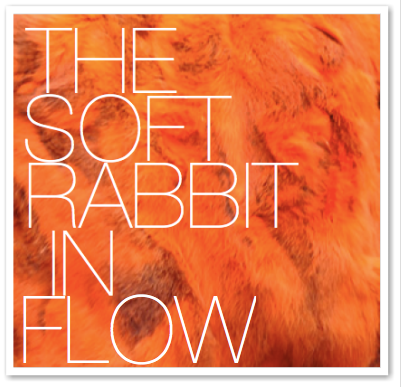 THE SOFT RABBIT IN FLOW