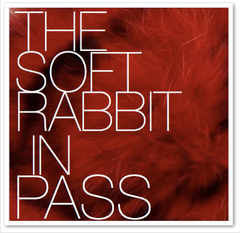 THE SOFT RABBIT IN PASS