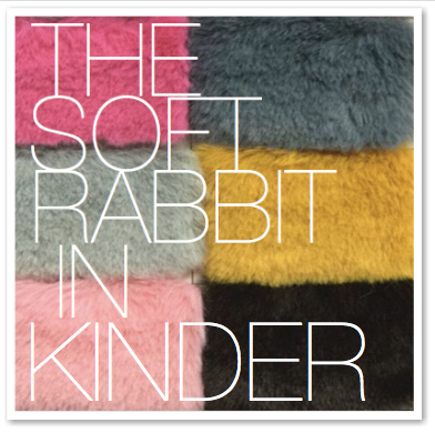 THE SOFT RABBIT IN KINDER