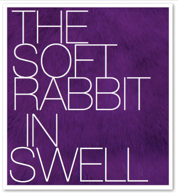THE SOFT RABBIT IN SWELL
