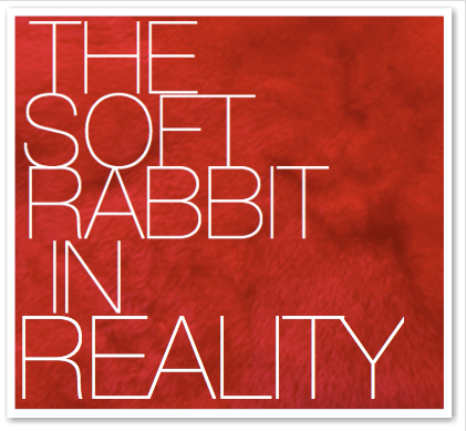 THE SOFT RABBIT IN REALITY