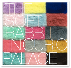 THE SOFT RABBIT IN CURIO PALACE