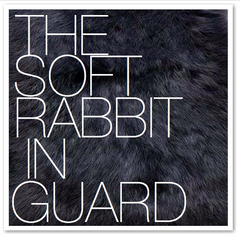 THE SOFT RABBIT IN GUARD