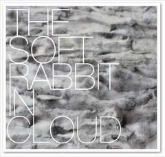 THE SOFT RABBIT IN CLOUD