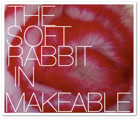 THE SOFT RABBIT IN MAKEABLE