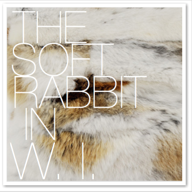 THE SOFT RABBIT IN W.I.
