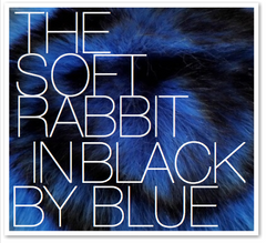 THE SOFT RABBIT IN BLUE BY BLACK