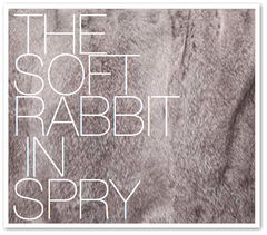 THE SOFT RABBIT IN SPRY
