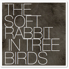 THE SOFT RABBIT IN TREE BIRDS