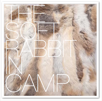 THE SOFT RABBIT IN CAMP