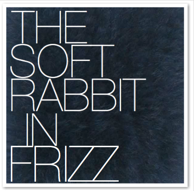 THE SOFT RABBIT IN FRIZZ