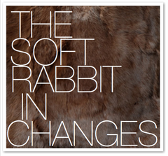 THE SOFT RABBIT IN CHANGES