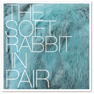 THE SOFT RABBIT IN PAIR