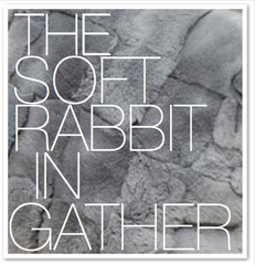 THE SOFT RABBIT IN GATHER
