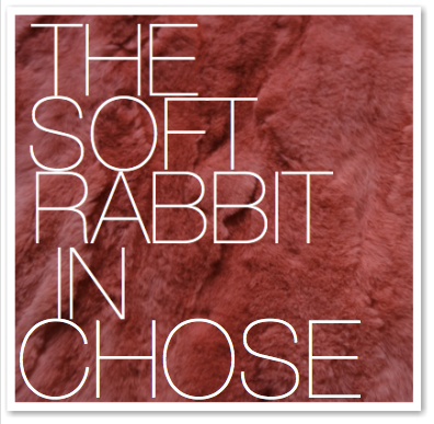 THE SOFT RABBIT IN CHOSE