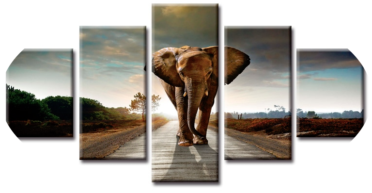 """THE APPROACHING ELEPHANT"""