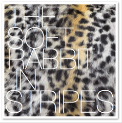 THE SOFT RABBIT IN STRIPES