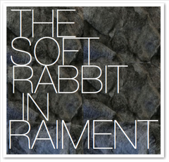 THE SOFT RABBIT IN RAIMENT