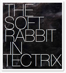 THE SOFT RABBIT IN TECTRIX