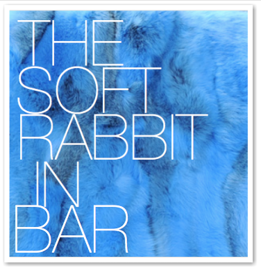 THE SOFT RABBIT IN BAR