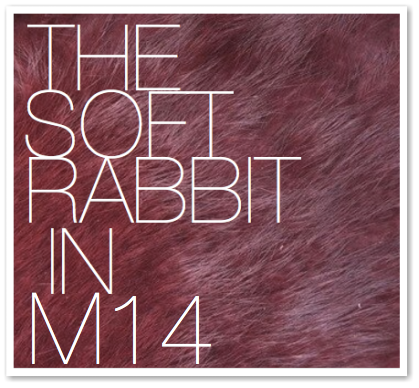 THE SOFT RABBIT IN M14