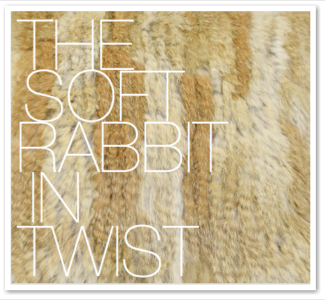 THE SOFT RABBIT IN TWIST