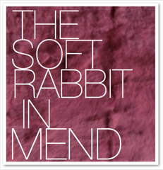 THE SOFT RABBIT IN MEND