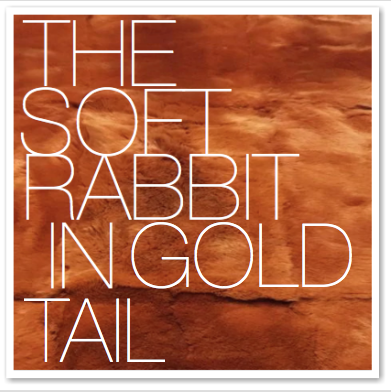 THE SOFT RABBIT IN GOLD TAIL