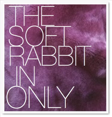THE SOFT RABBIT IN ONLY