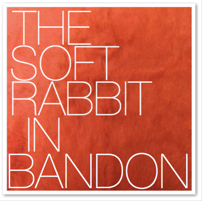 THE SOFT RABBIT IN BANDON