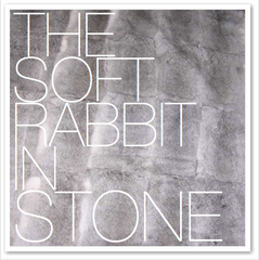 THE SOFT RABBIT IN STONE