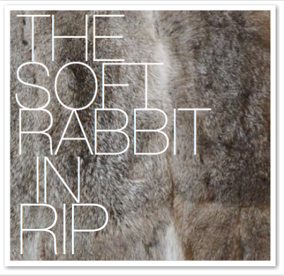 THE SOFT RABBIT IN RIP