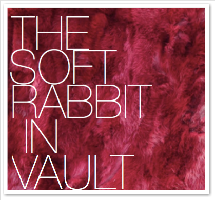 THE SOFT RABBIT IN VAULT