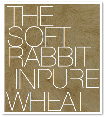 THE SOFT RABBIT IN PURE WHEAT