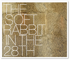 THE SOFT RABBIT IN THE 28TH