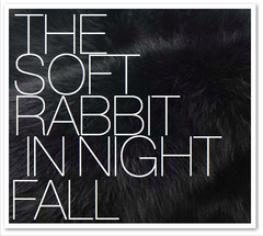THE SOFT RABBIT IN NIGHT FALL