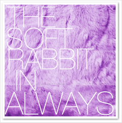 THE SOFT RABBIT IN ALWAYS